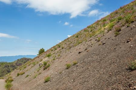 Vesuvius volcano crater Stock Photo