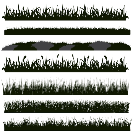 Vector Set of Black Grass Silhouettes on White Backround Reklamní fotografie