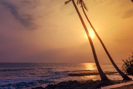 Sunset at tropical beach 版權商用圖片