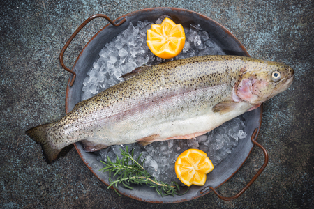 Raw trout fish on ice with rosemary and lemon over stone dark background , top view