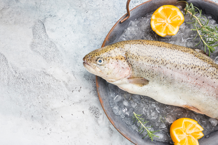 Raw trout fish on the tray with ice with rosemary and lemon over stone light background , top view