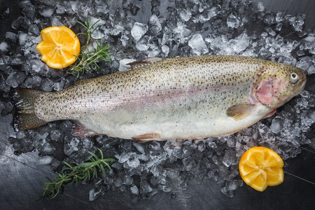Raw trout fish on ice with rosemary and lemon over stone dark