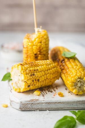 Grilled corn cobs with salt and spices on white background