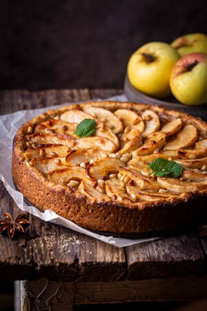 Homemade delicious fresh baked rustic apple pie on dark background