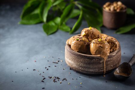 Scoops of coffee or chocolate ice cream in a bowl with green leaves on dark background Standard-Bild