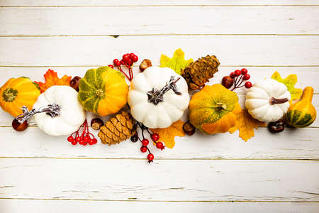 Autumn side border of white pumpkins and autumn leaves over a rustic white wood background, top view Imagens