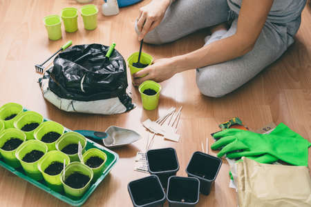 Young woman plant seedlings at home on the floor. Hold the garden tools