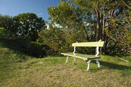 Leere Holzbank in einem Park an einem sonnigen Tag  Standard-Bild - 7847376