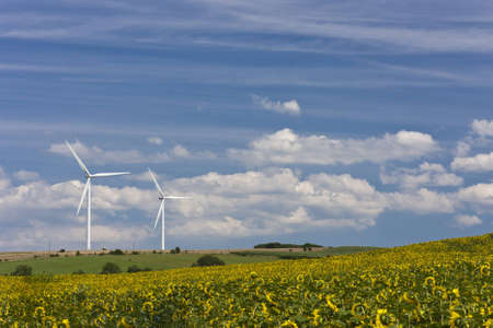 Wind energy generating turbines standing in the field with sunflowers. Standard-Bild