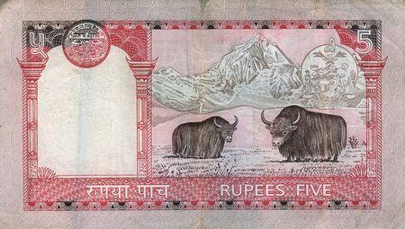 cash cow: napal note