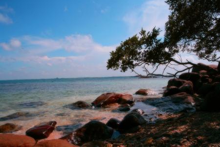 beach  with stone Stock Photo