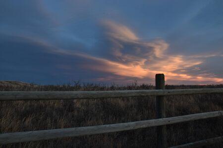 冬の草原の風景