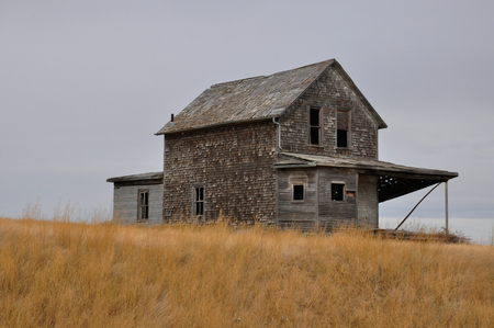 abandoned homestead on a golden field