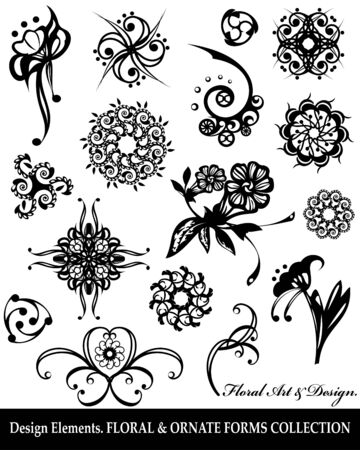 Floral design elements collection, isolated on white.