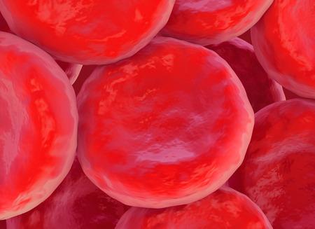 red blood cell: ilustraci�n de gl�bulos rojos