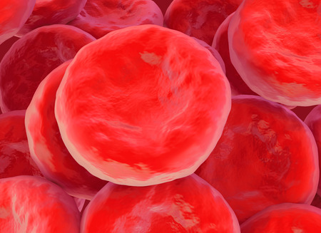 red blood cell illustration