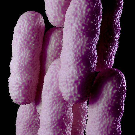 biomolecules: Illustration of bacteria cells