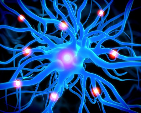 Concept of neurons and nervous system.