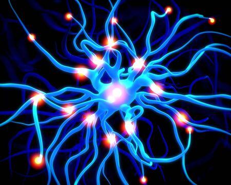 autonomic: Concept of neurons and nervous system.