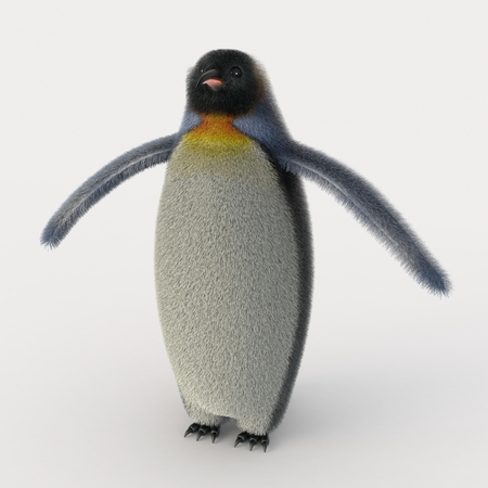 emperor: Emperor penguins , cartoon penguins , 3d render penguins isolated on white background