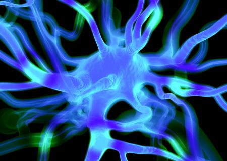 sistema nervioso: Células neuronales o nerviosos que forman parte del sistema nervioso que procesar y transmitir la información por la señalización eléctrica y química. Foto de archivo