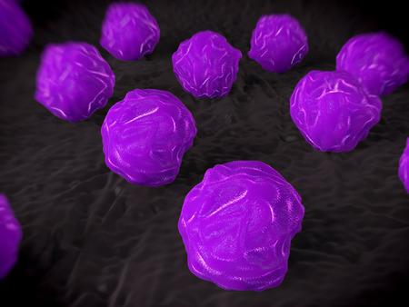 circulo de personas: La m�dula �sea, las c�lulas madre de las c�lulas madre de m�dula �sea humana. Estas c�lulas se conocen como c�lulas madre multipotenciales debido a que forman los precursores de cada tipo de c�lula sangu�nea. Durante el desarrollo de c�lulas de la sangre las c�lulas madre multipotenciales se desarrolla por un proceso de conocimiento