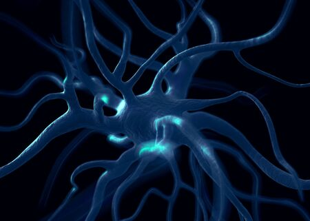 signalling: Neuron or nerve cells which form part of the nervous system which process and transmit information by electrical and chemical signalling.
