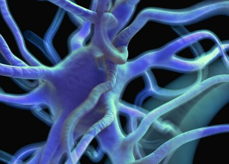 neurone: Neuron or nerve cells which form part of the nervous system which process and transmit information by electrical and chemical signalling.