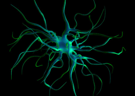 stimulating: Neuron or nerve cells which form part of the nervous system which process and transmit information by electrical and chemical signalling.