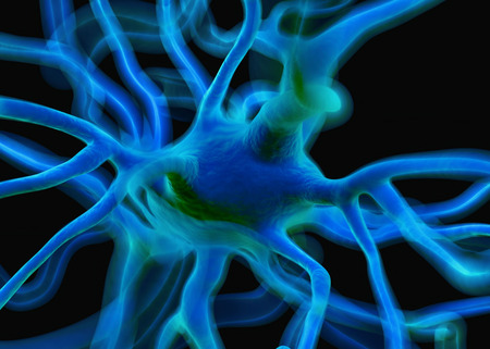 dendrites: Neuron or nerve cells which form part of the nervous system which process and transmit information by electrical and chemical signalling.