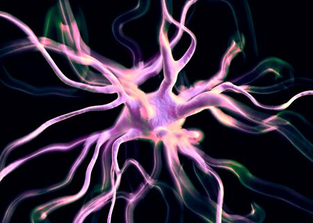 hormon: Neuron or nerve cells which form part of the nervous system which process and transmit information by electrical and chemical signalling.