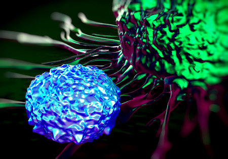 antigenic: T-cells attacking cancer cell  illustration of  microscopic photos