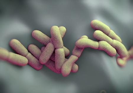 plaga: Yersinia pestis (peste) bacterias Foto de archivo