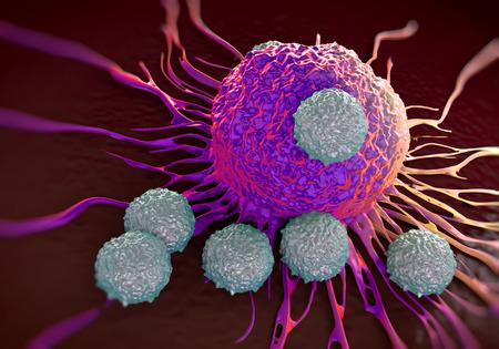 globulos blancos: Las células T que atacan la ilustración de células de cáncer de fotos microscópicas