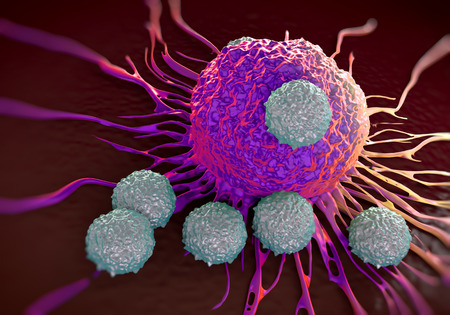 malignant cells: T-cells attacking cancer cell  illustration of  microscopic photos