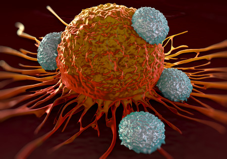 T-cells attacking cancer cell  illustration of  microscopic photos