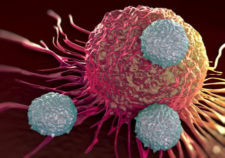 현미경 사진의 암세포 그림을 공격하는 T 세포