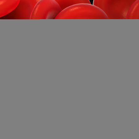 platelet: red blood cells,activated platelet and white blood cells microscopic photos Stock Photo