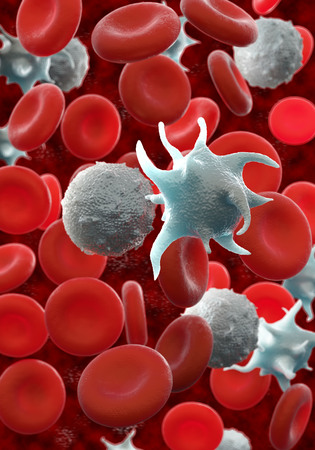 red blood cells,activated platelet and white blood cells microscopic photos Stockfoto
