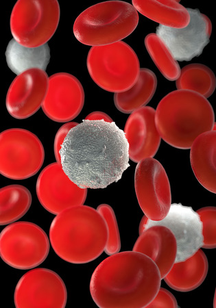 red blood cells,activated platelet and white blood cells microscopic photos Stock Photo