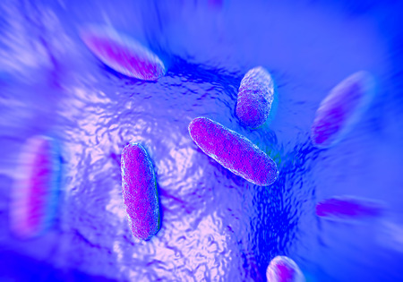 microbial: Salmonella typhimurium bacterium, a flagellate, Gram-negative bacillus. S. typhimurium is a major cause of food poisoning (salmonellosis) in humans. Salmonella bacteria are transmitted in food