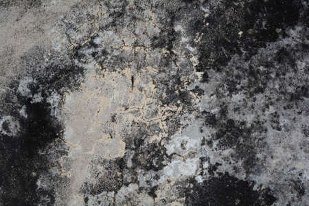 cement wall: Old wall background