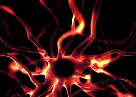 cuerpo completo: células de la neurona o nerviosos que forman parte del sistema nervioso