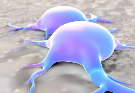 magnified image: fat cells Stock Photo