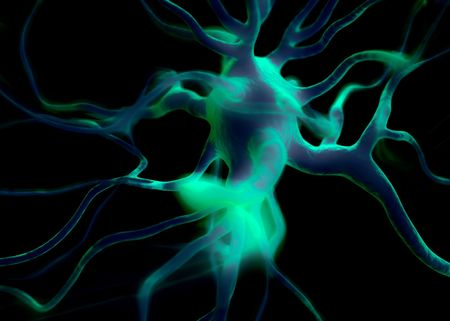sistema nervioso: células de la neurona o nerviosos que forman parte del sistema nervioso