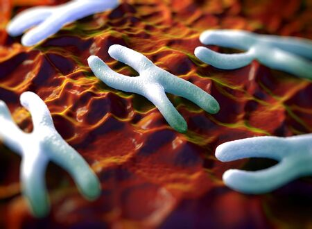 telomere: Chromosomes are a packaged form of the genetic material DNA  and form during cell replication