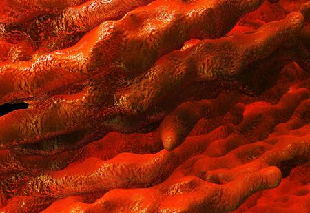 pathogenic: Tuberculosis bacteria