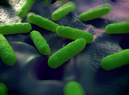 Ilustracja z komórek bakteryjnych