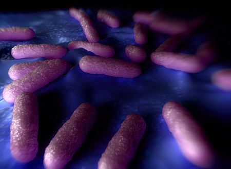 Illustration of bacteria cells
