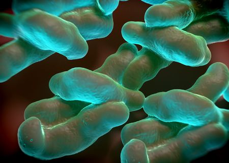 3d rendering - campylobacter jejuni bacteria